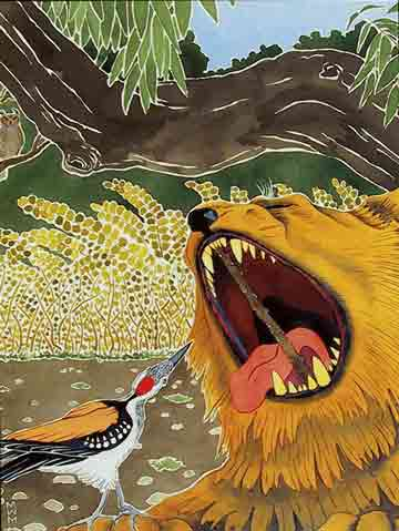 The Woodpecker And The lion illustration - Buddhist Animal Wisdom Stories book