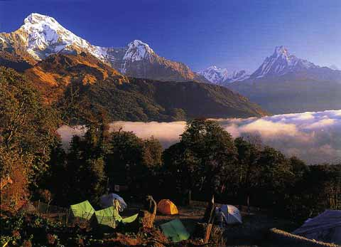 Annapurna South, Hiunchuli, and Machupuchare at sunrise from Tadapani - Trekking And Climbing in Nepal book