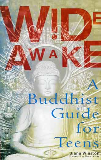 Wide Awake: A Buddhist Guide For Teens book cover